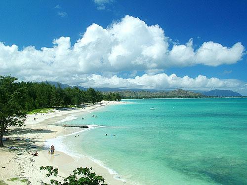 kailua big and beautiful singles Book honu kai b&b, hawaii on tripadvisor: see 570 traveler reviews, 476 candid photos, and great deals for honu kai b&b, ranked #2 of 13 b&bs / inns in hawaii and rated 5 of 5 at tripadvisor.